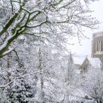 Mount Saint Bernard Abbey